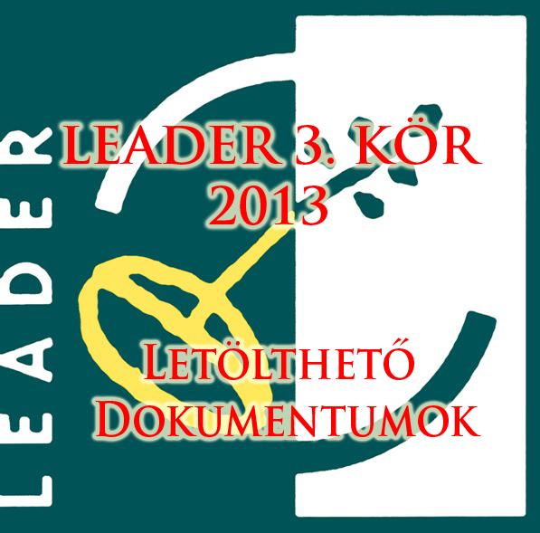Leader 3. kör 2013